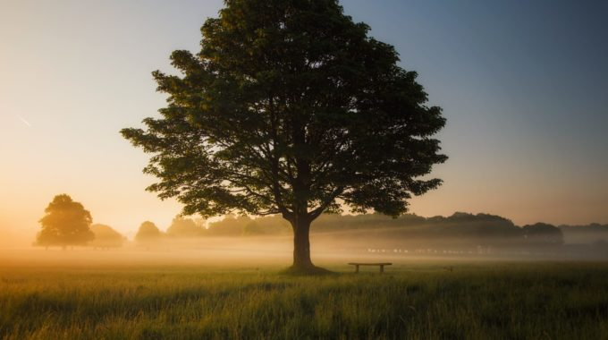 #nofilter: The Art Of Mindful Presence